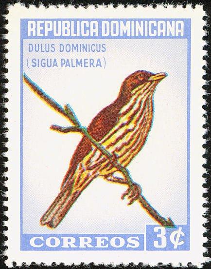 cigua palmera