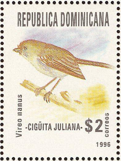 Cigüita juliana
