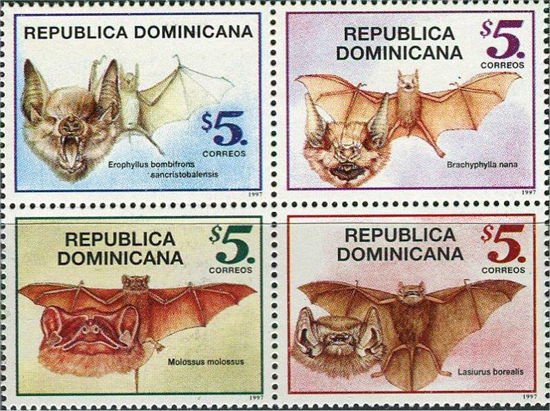 Quirópteros (Murciélagos)