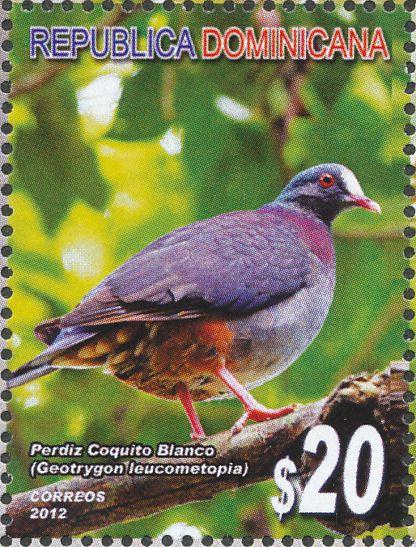 Perdiz o paloma coquito blando