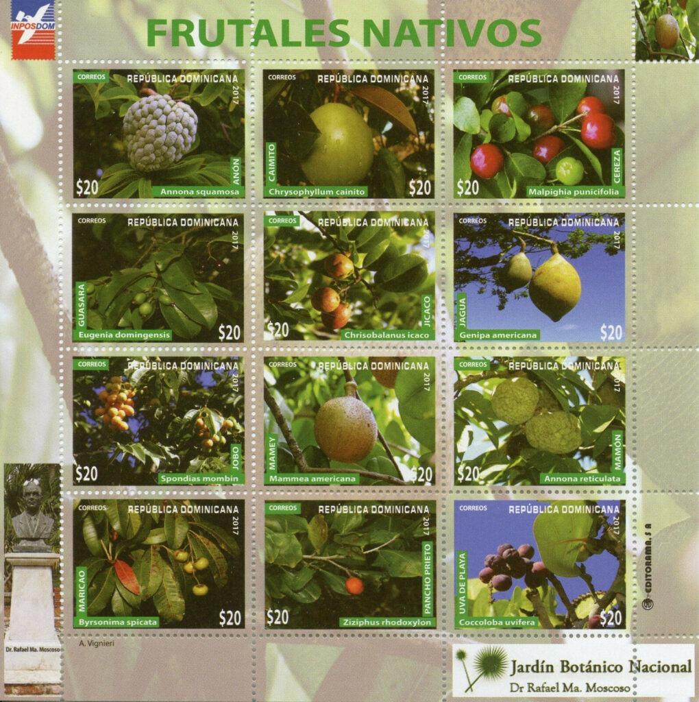 Flora, frutales nativos