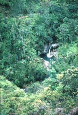 Arroyo en reserva Ébano Verde