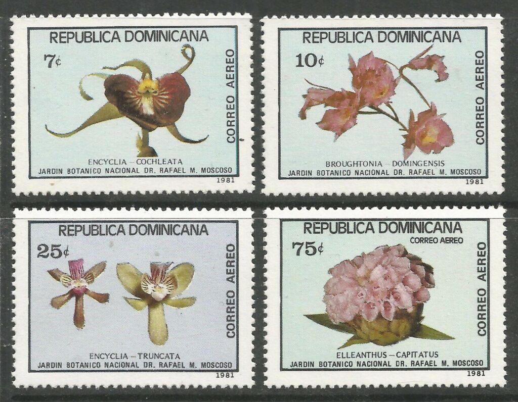 Orquídeas - Jardín Botánico