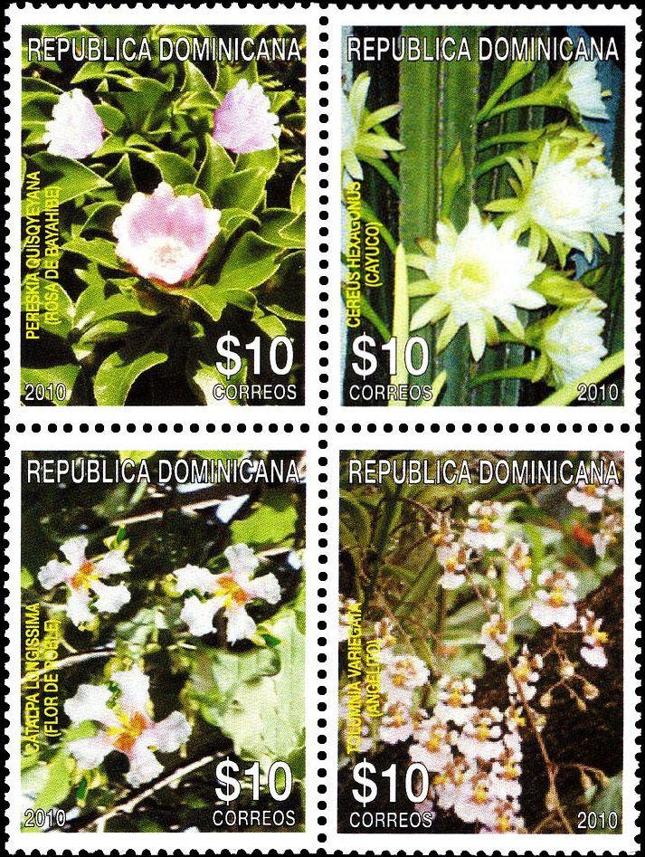 Flora dominicana - Rosa de Bayahibe, cayuco, roble, angelito.