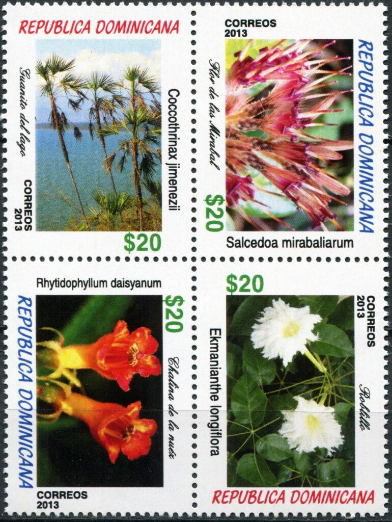 Flora dominicana - Flor de las Mirabal, roblillo, guanito del lago, chalina de la nuez