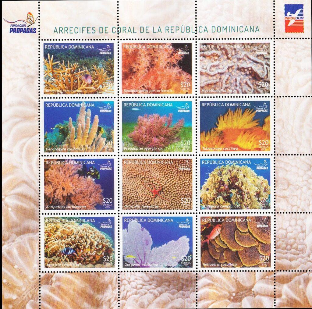 Arrecifes de Coral de República Dominicana. Hoja 2