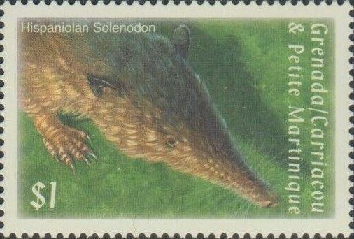 Solenodón de Hispaniola