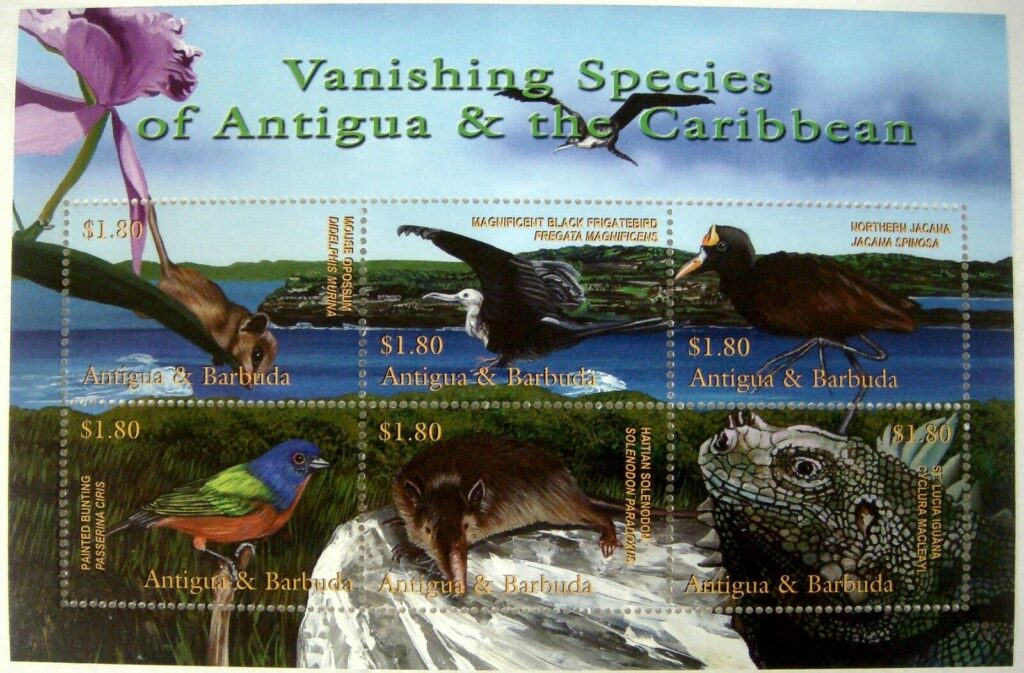 2001_antigua-barbuda-vanishing-species